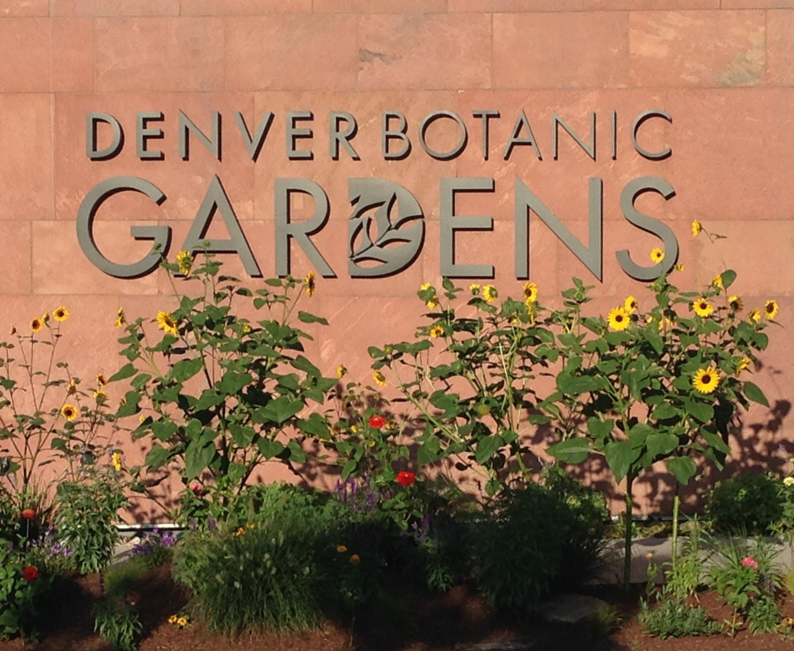 Denver Botanic Gardens\' Outdoor Chihuly Exhibit | Denver, Colorado ...